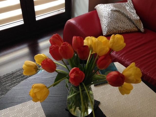 Home Tulips